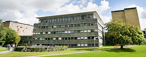 The Department of Mathematical Sciences